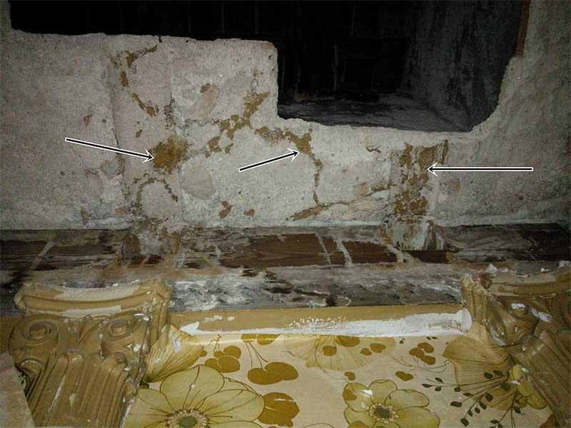 eliminar-termitas-sanite-11
