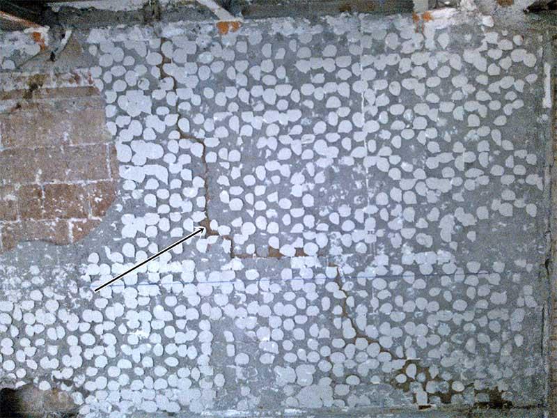 eliminar-termitas-sanite-2-1