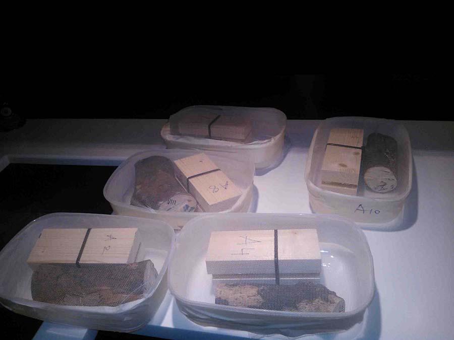 Preparación de las muestras combinadas aportadas por los dos Centros Tecnológicos
