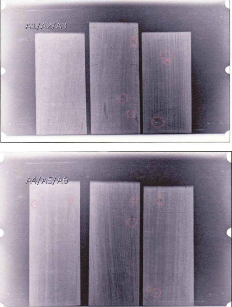 Radiografías realizadas para la localización de xilófagos -Cortesía de Tecnalia-