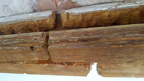 Proceso de saneado de las zonas de la madera donde se han producido las roturas de la fibra.