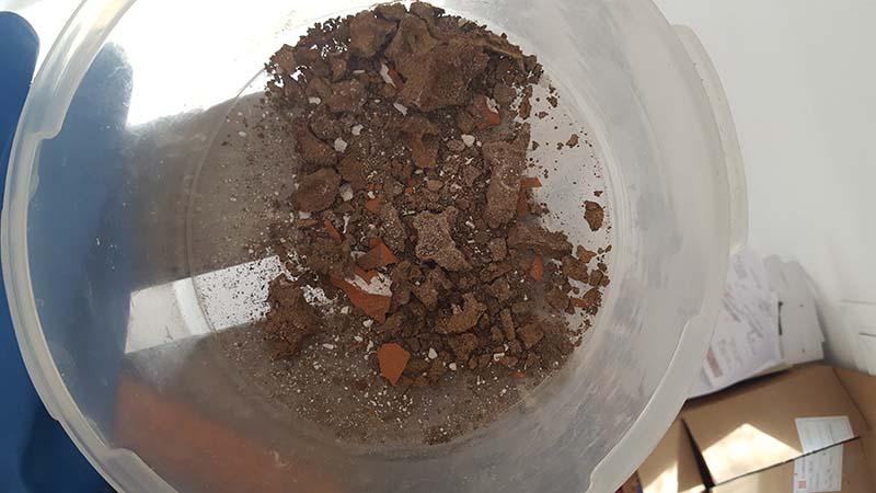 Extracción de la estructura alojada en la bovedilla.